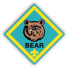 scout bear